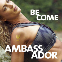 Ambassador Programm
